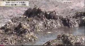 ゴミ問題,フィリピン,日本企業,マイクロプラスチック